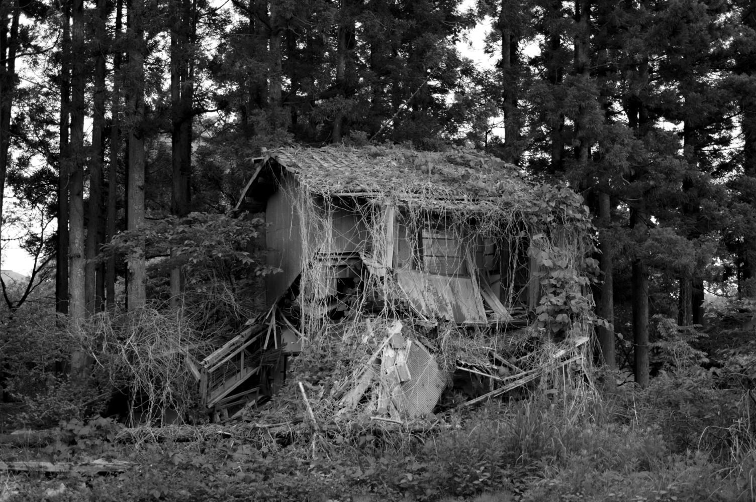 Fukushima, Seven Years On • Moises Saman