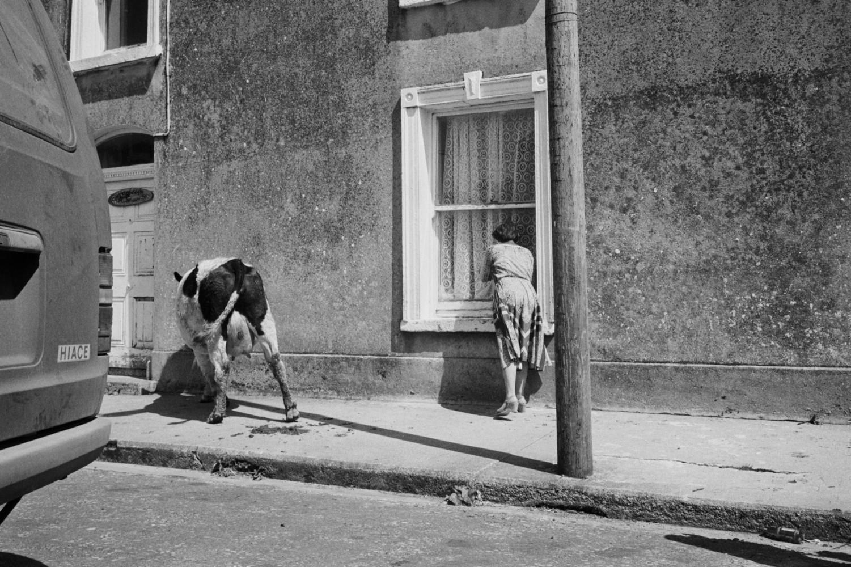 The Lure of Pleasure – Martin Parr | Magnum Photos